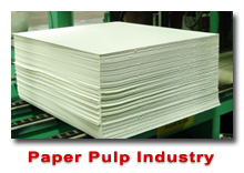 Paper Pulp Industry